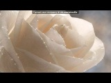 «С моей стены» под музыку Наташа Королёва  - Твой мир. Picrolla